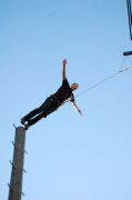 pamper_pole02.jpg